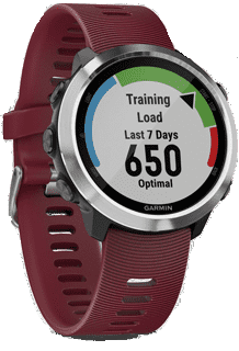 Ремонт Garmin Watch
